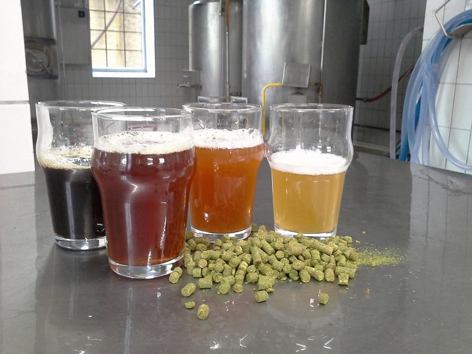 Colourful palette of Human Fish beers. Source: Human Fish Brewery